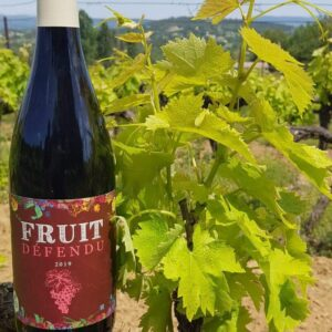 Fruit défendu vin bio rouge